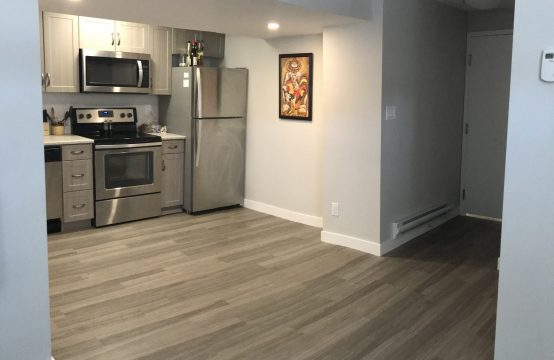 Ultra Modern, Upgraded 2 Bedroom Broadway Area Basement Suite